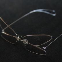 蟲眼鏡 蜻蛉